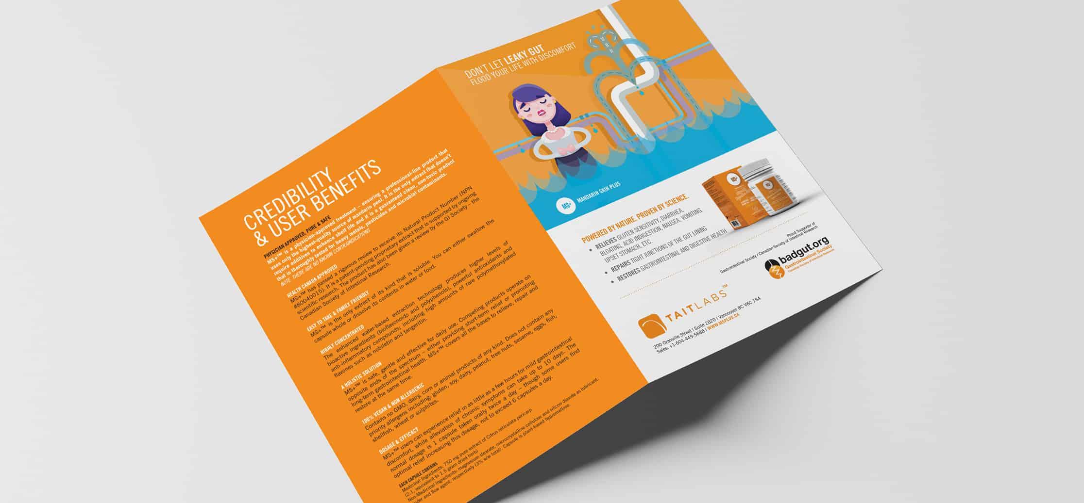 ms-brochure-fullwidth