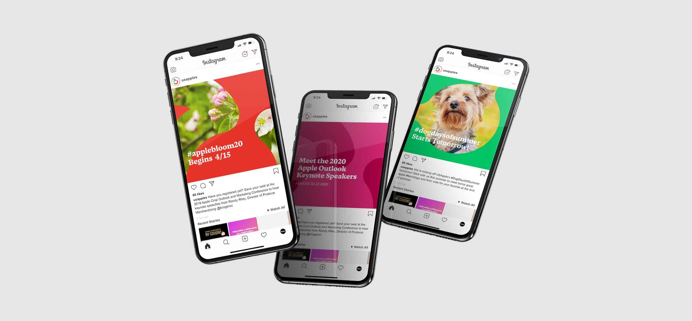 US Apple | Brand Identity and Website Redesign | Mekanic